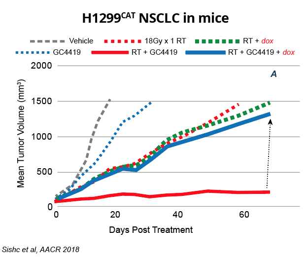 H1299CAT NSCLC in mice